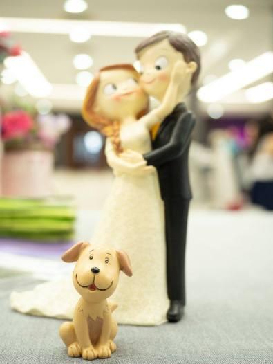 fotos boda web12