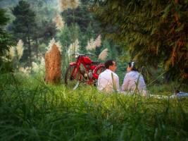 fotos boda web39